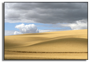 Palouse featured